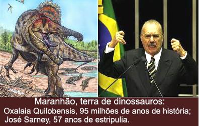 Por Salis Chagas